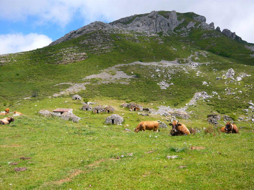 Corros de la Braña de Sousas - Cómo es el Parque Natural de Somiedo