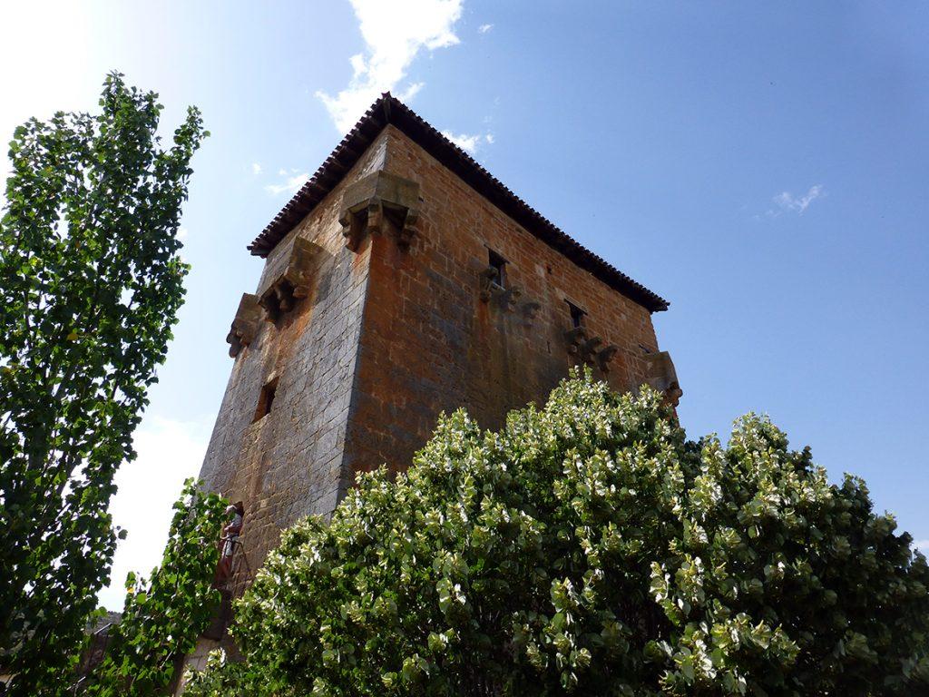 Vista de los matacanes del Torreón de Fernán González