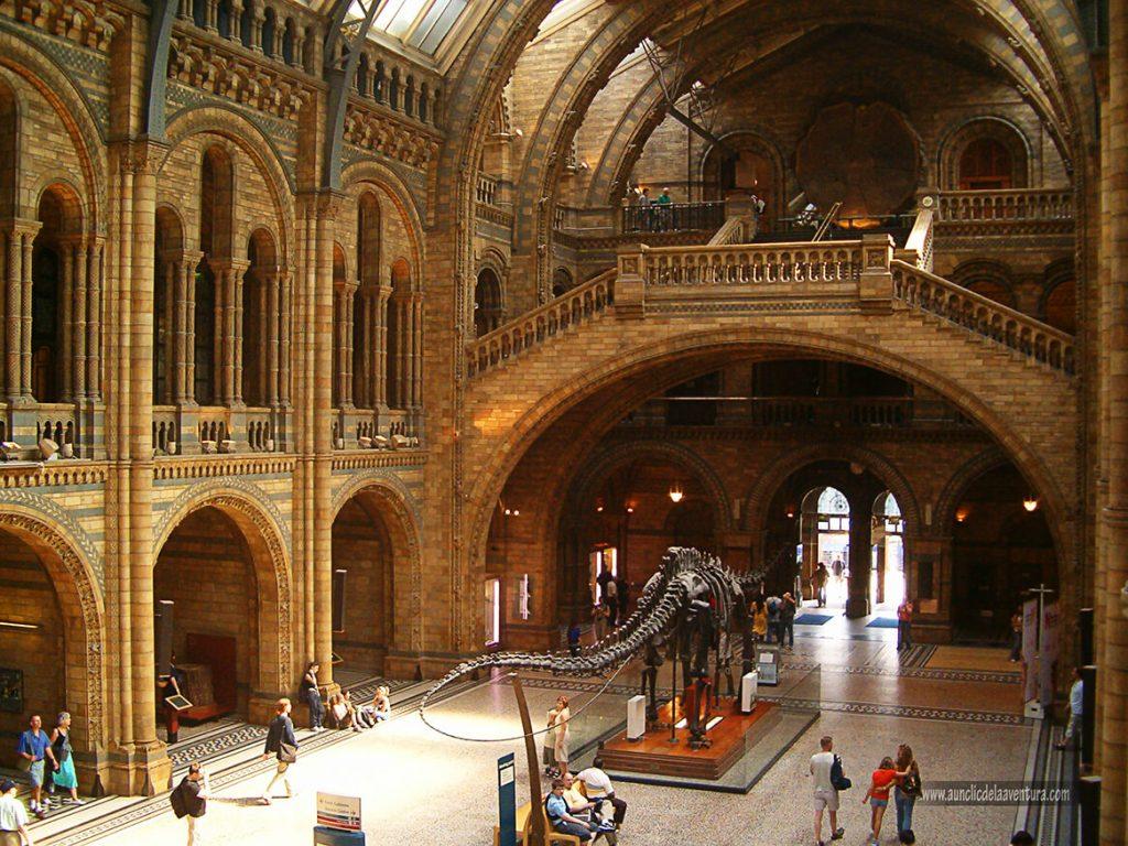 Londres, Museo de Historia Natural - mis ciudades favoritas