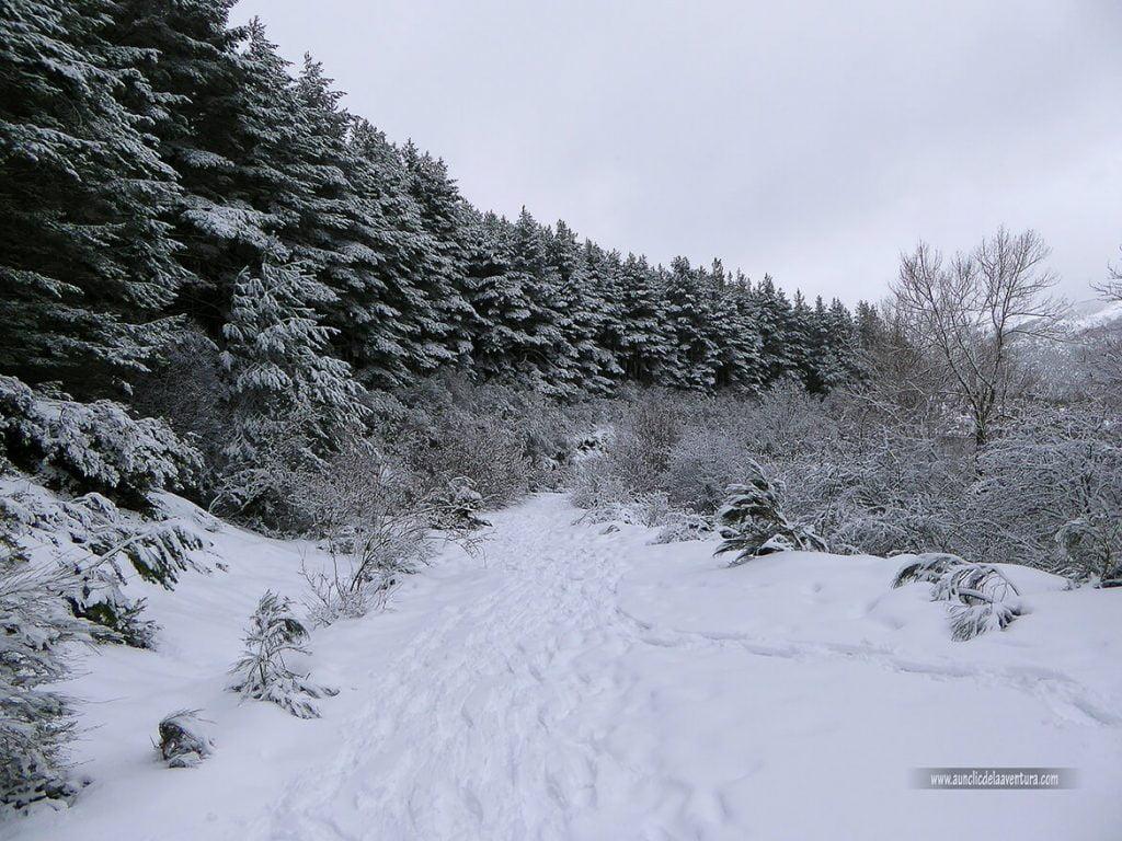 Antigua carretera de subida a la estación de esquí - nieve en Pineda de la Sierra