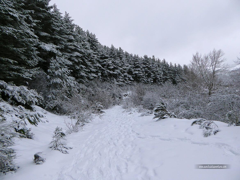 Antigua carretera de subida a la estación de esquí
