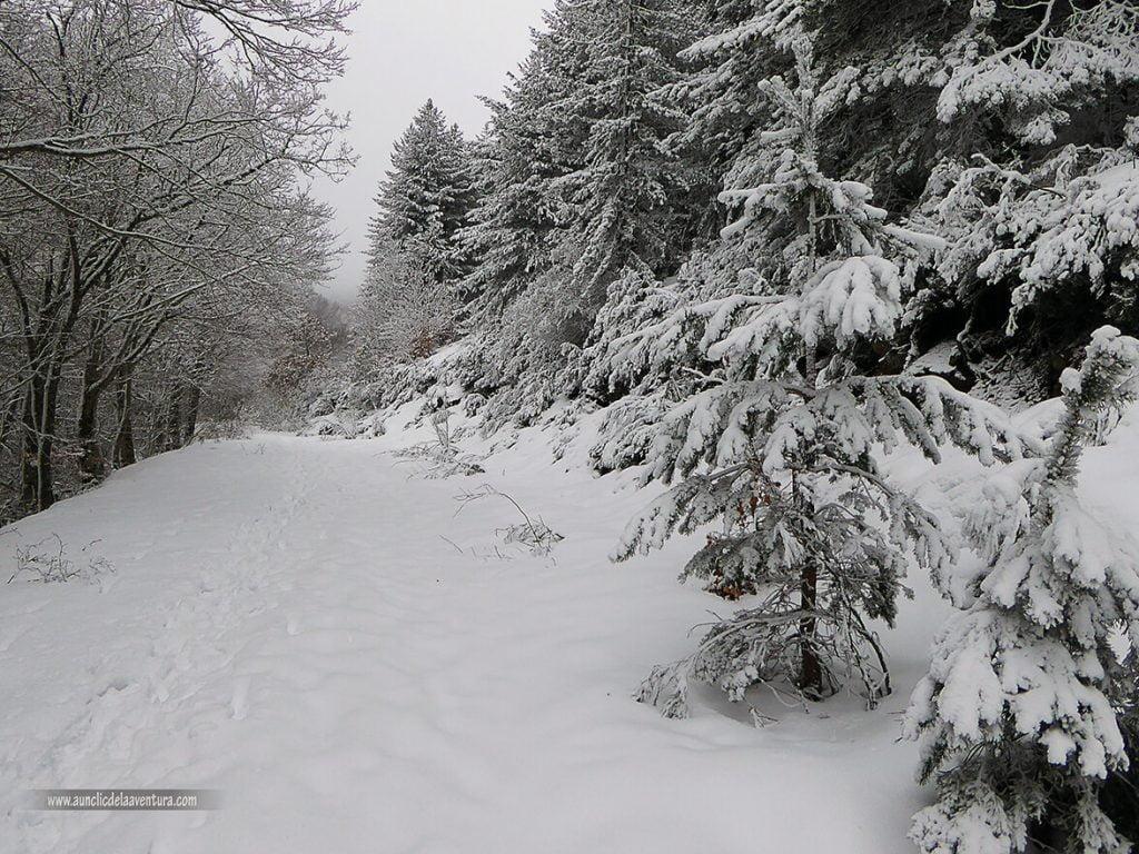 Antigua carretera de la estación de esquí - nieve en Pineda de la Sierra