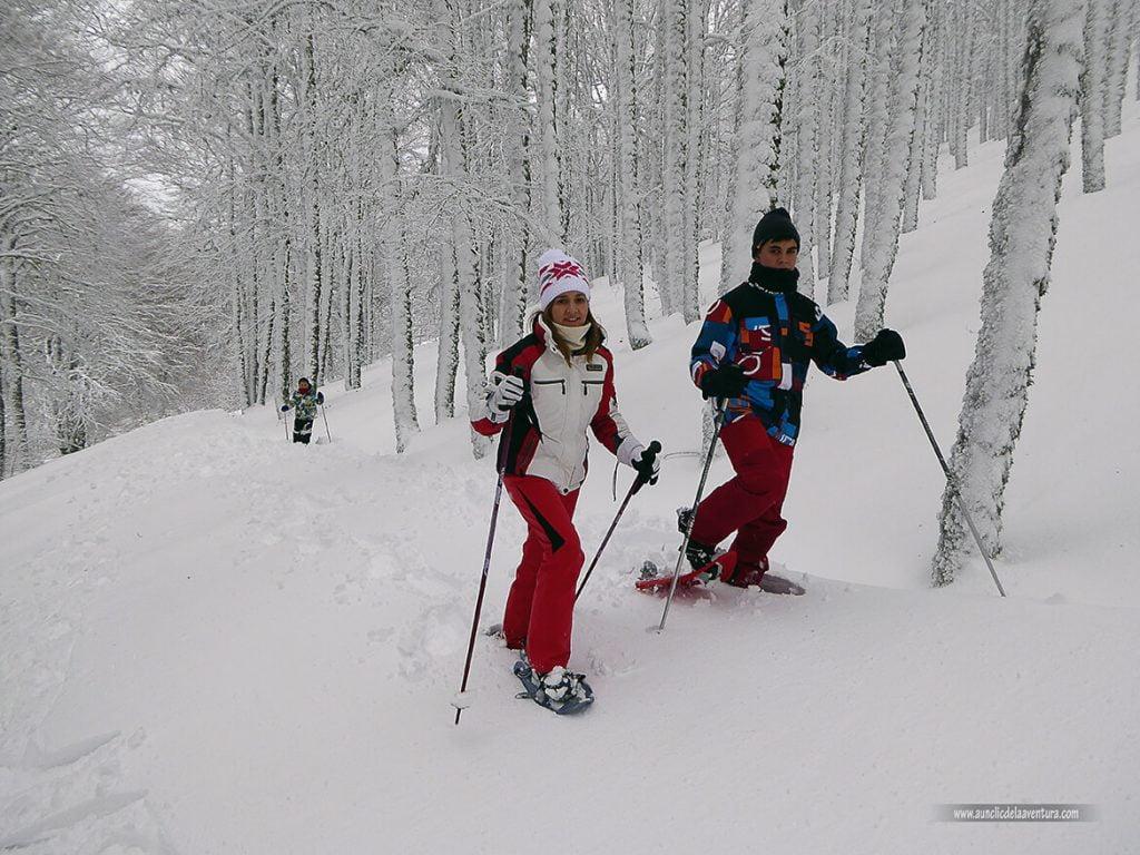 En el hayedo con nieve en Pineda de la Sierra