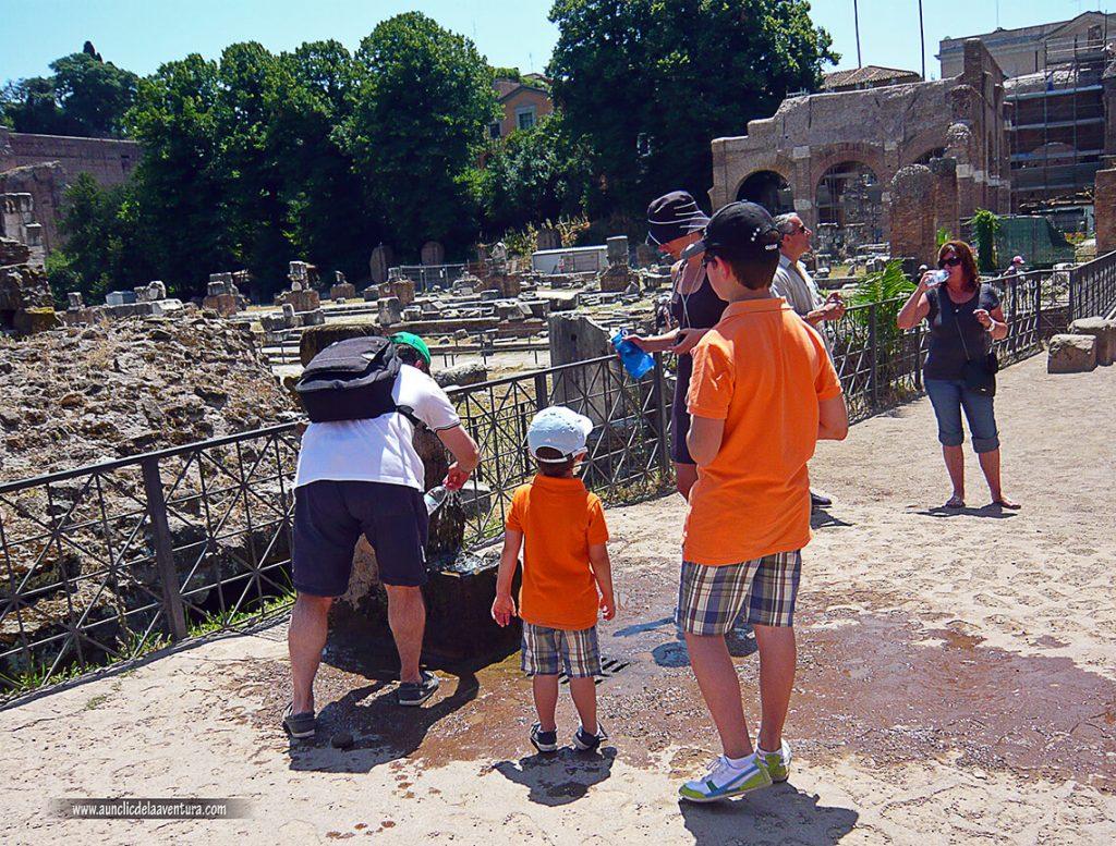 Cogiendo agua en el Foro - Consejos para visitar Roma