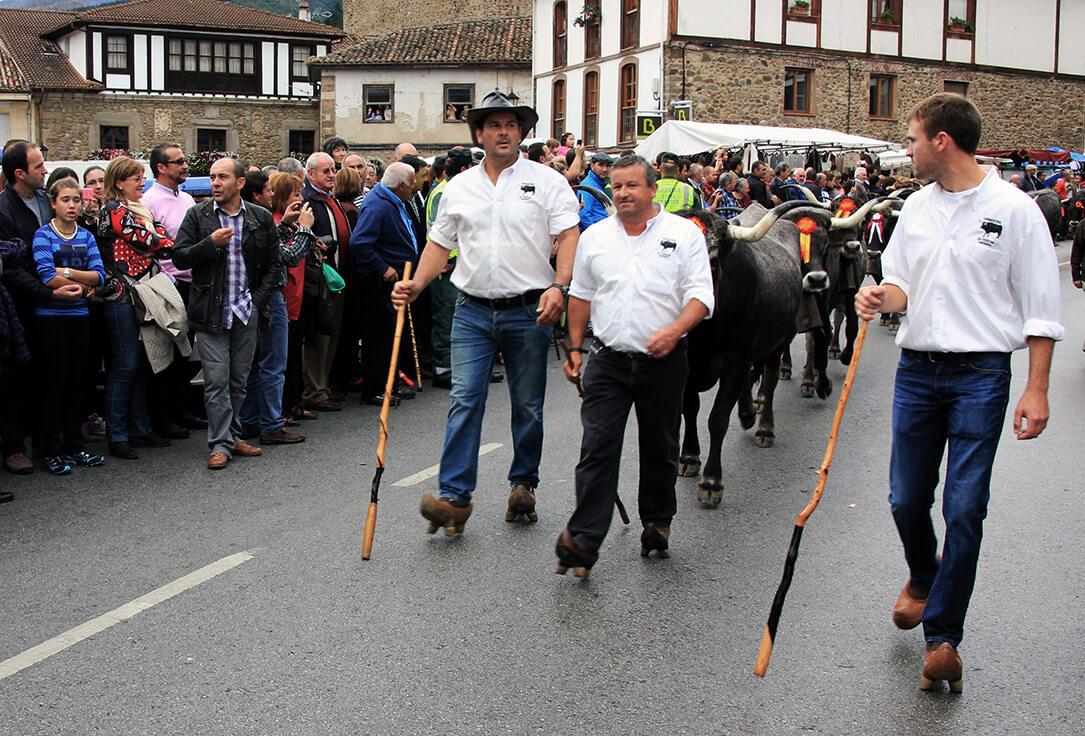 Feria de ganado de Potes (Cantabria)