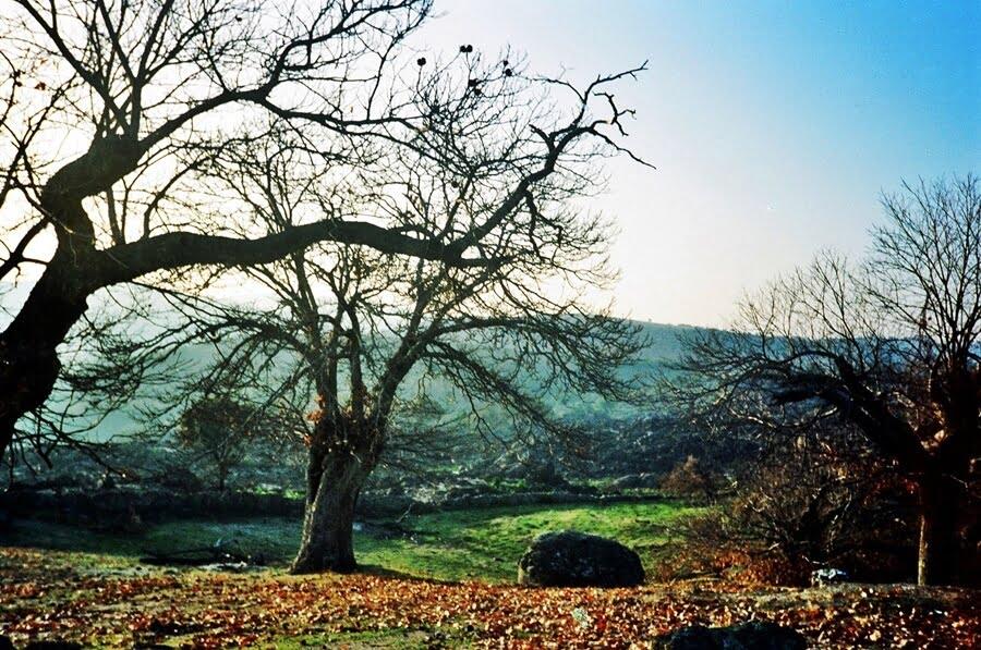 Valencia de Alcántara - escapadas de otoño en España