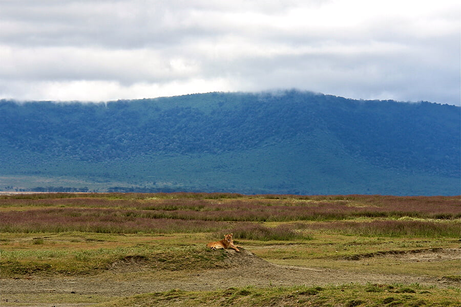 Cráter del Ngorongoro - paisajes más impresionantes del mundo