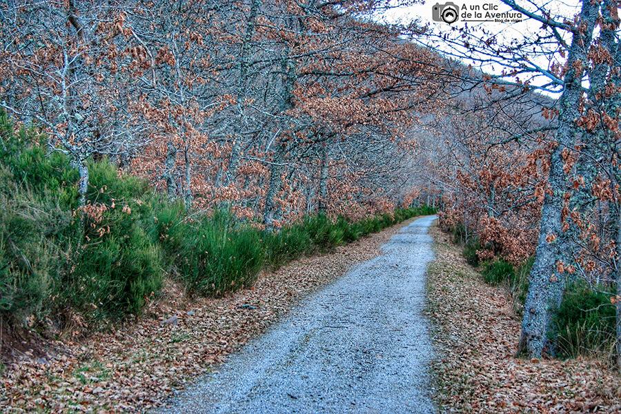 Vía verde del ferrocarril minero de la Sierra de la Demanda