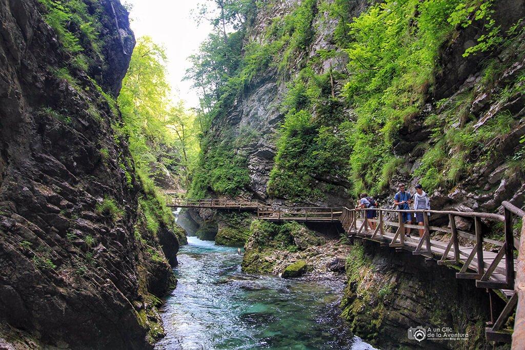 Pasarelas de la Garganta Vintgar - Viaje en coche a Eslovenia