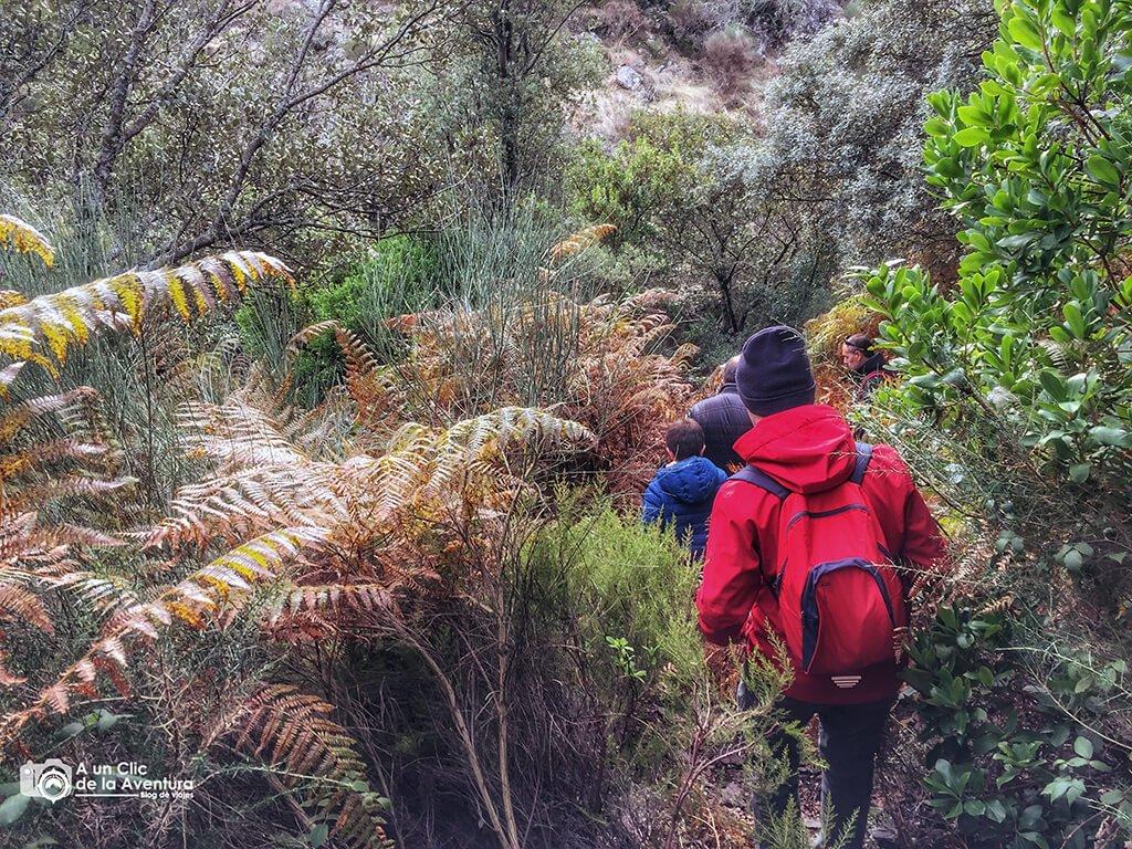 Hacia el nacimiento de la Cervigona en la Sierra de Gata - Sierra de Gata en familia