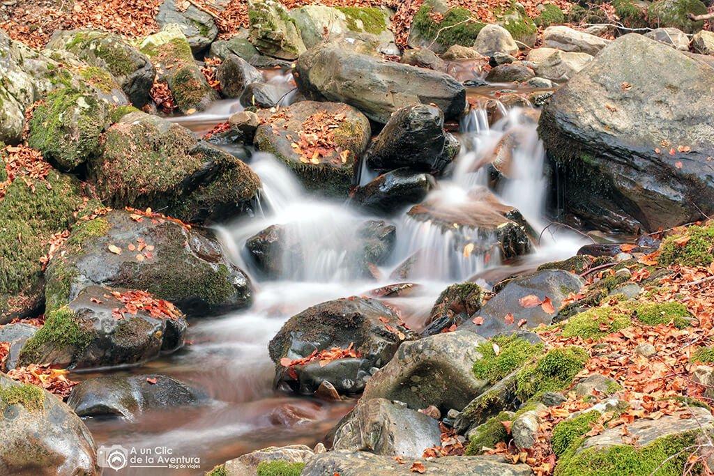 Saltos de agua del Río Urbión - hayedo del río Urbión