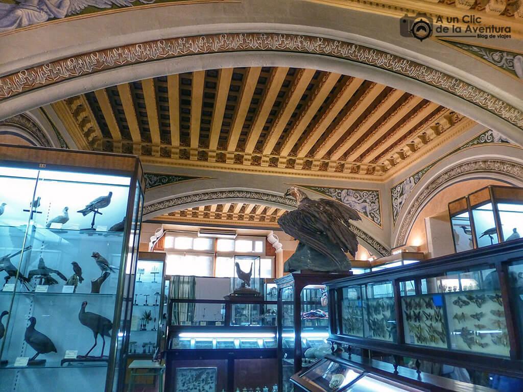 Museo de Ciencias Naturales del Instituto López de Mendoza - principales monumentos de Burgos en el Renacimiento