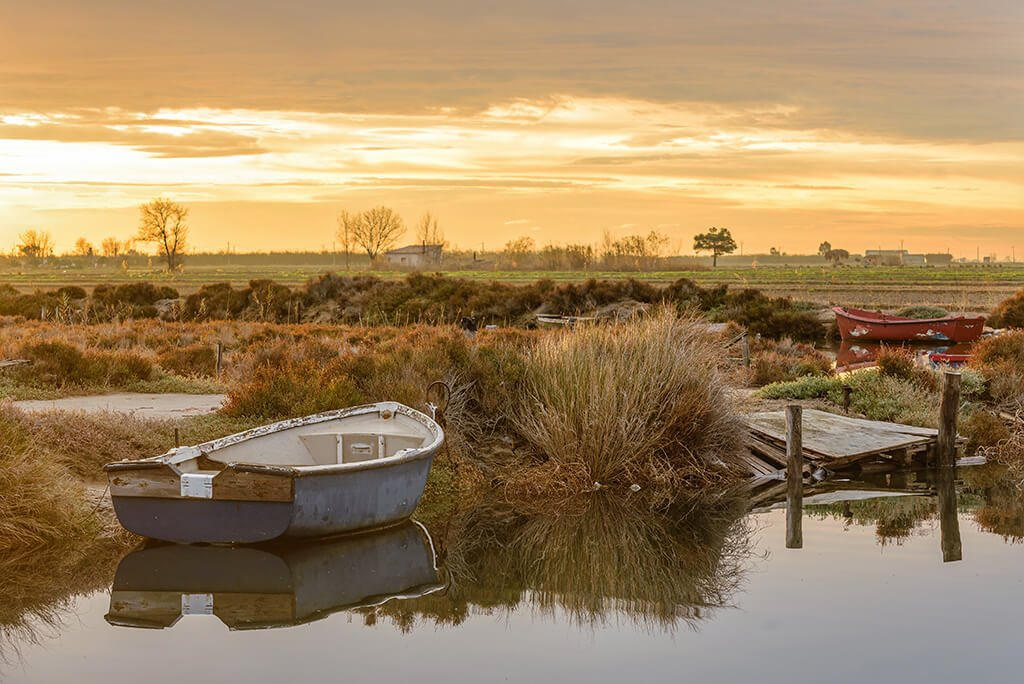 Paisaje del Delta del Ebro - humedales de España