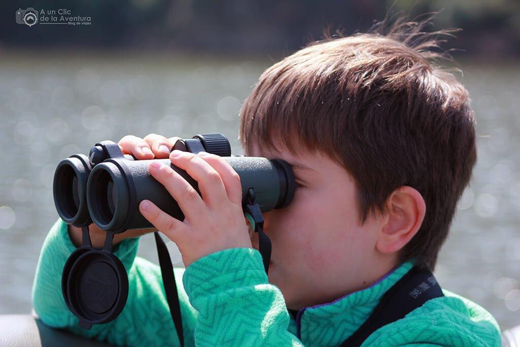 Observando aves - humedales de España