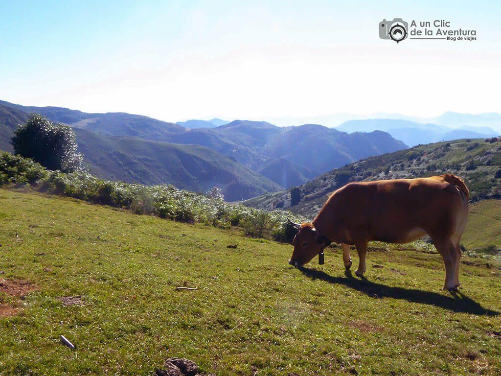 Paisaje de Somiedo - Cosas que hacer en el Parque Natural de Somiedo