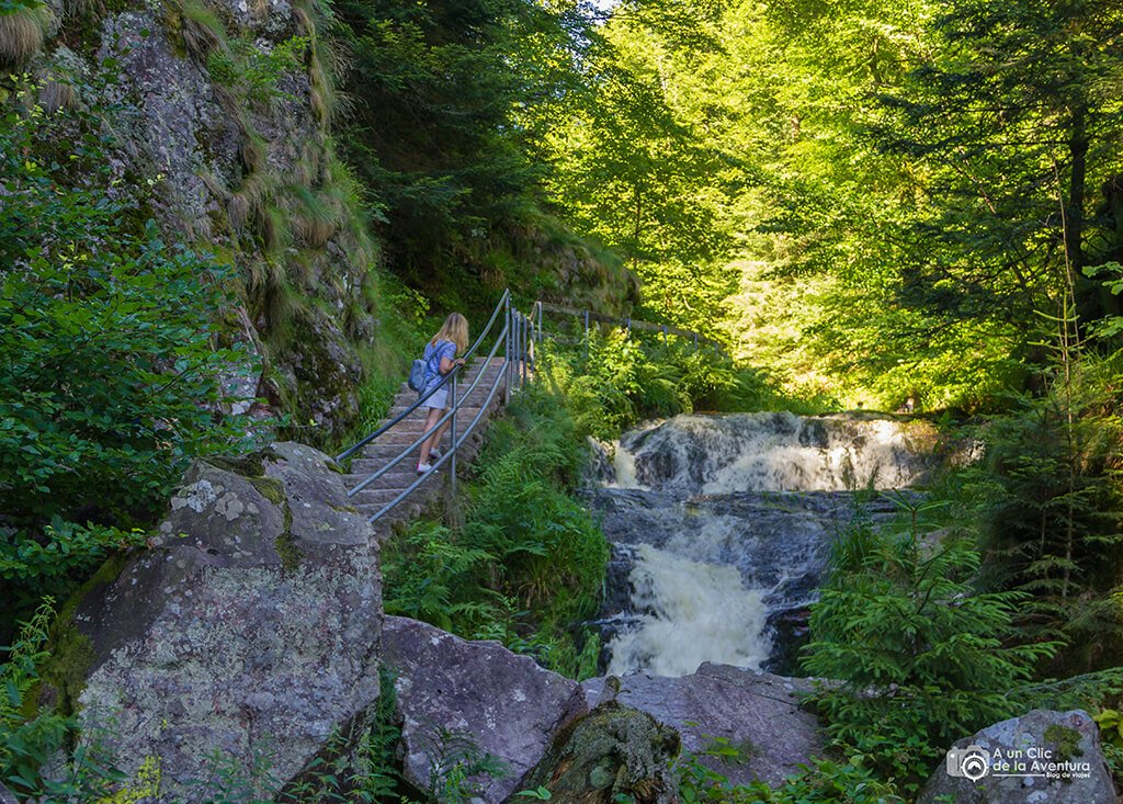 Cascadas de Allerheiligen, ruta por la Selva Negra en coche