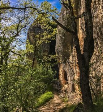 Santorkaria, Condado de Treviño