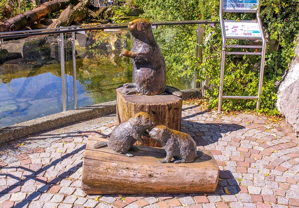 Zoo Alpino o Alpenzoo - que ver en Innsbruck