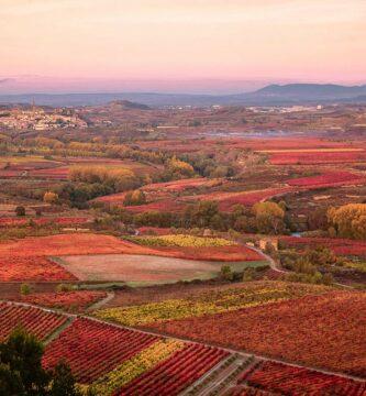 Fin de semana en La Rioja Alta