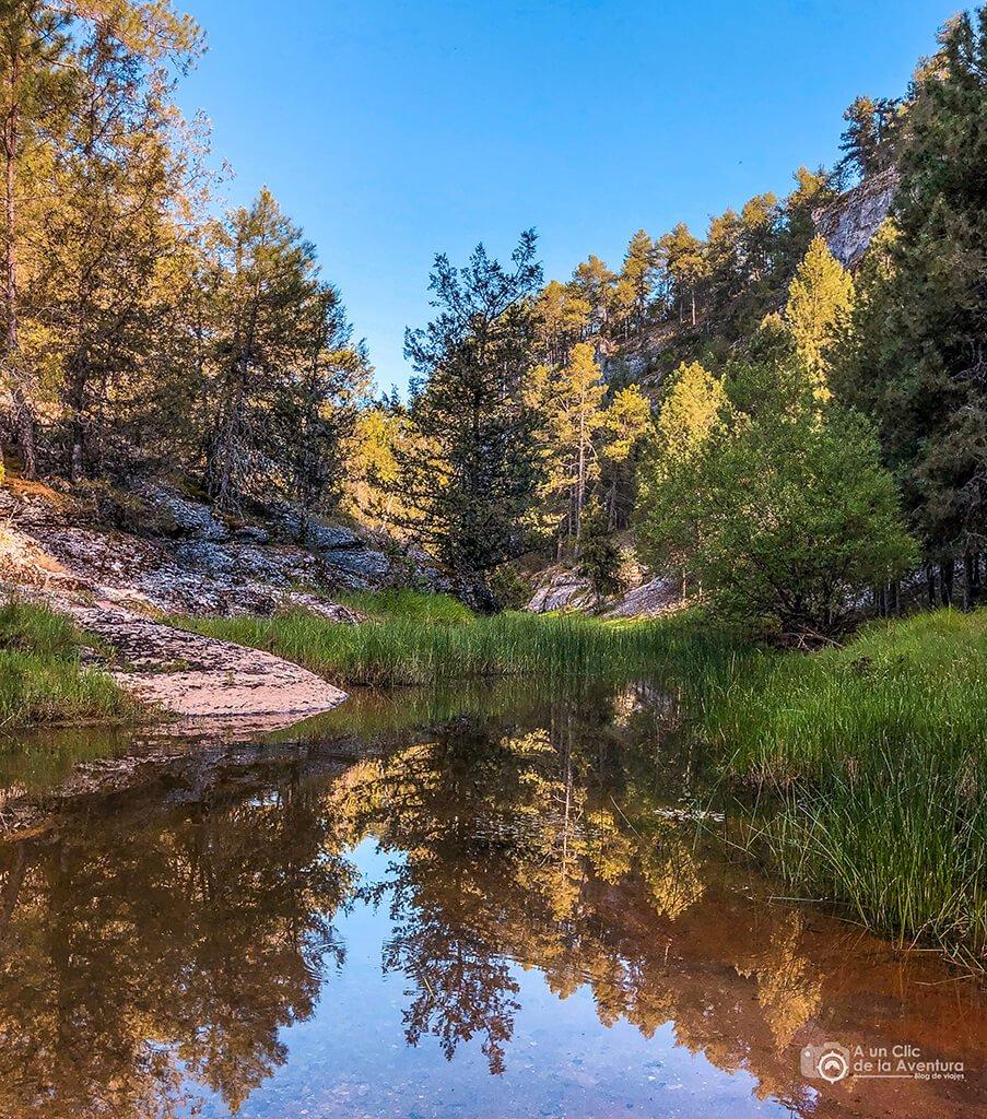 Charca de ranas, ruta por el Cañón del Río Lobos