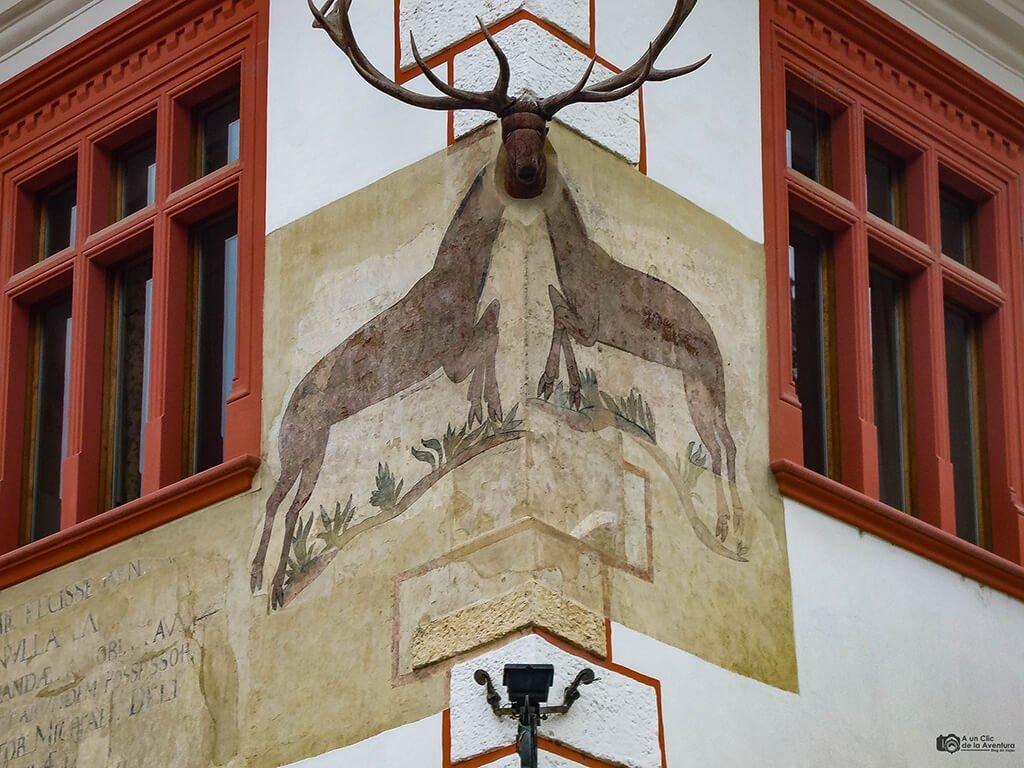 Casa con Ciervo de Sighisoara