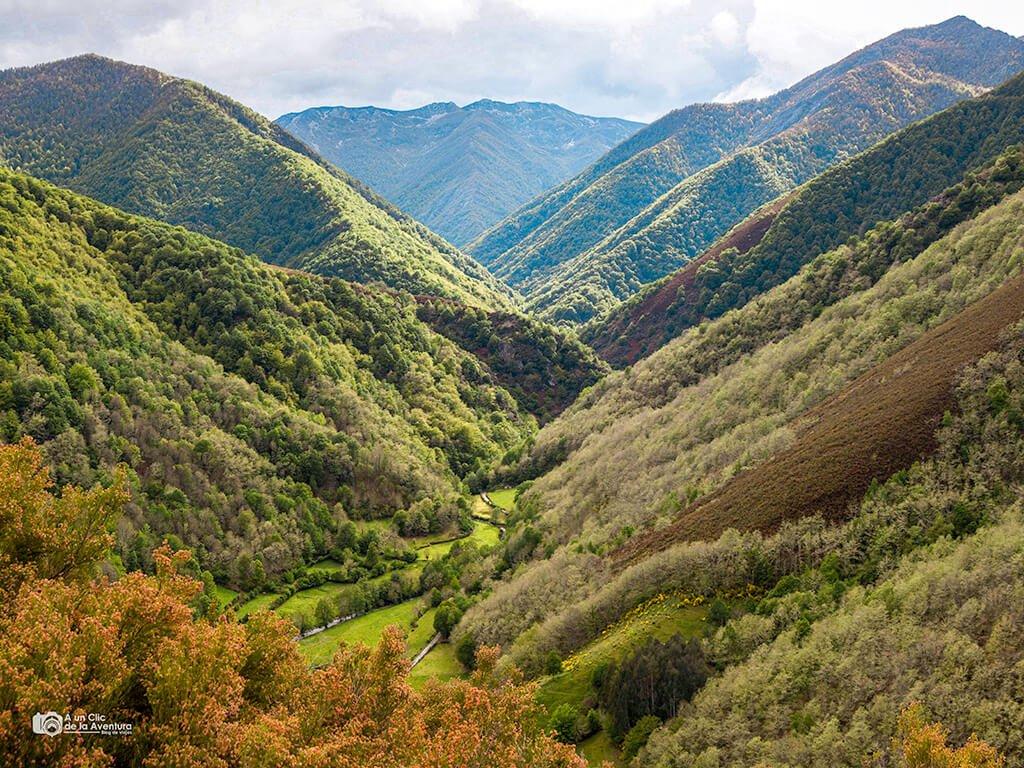 Reserva Natural de Muniellos