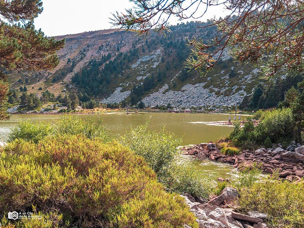 Laguna de los Patos, Neila