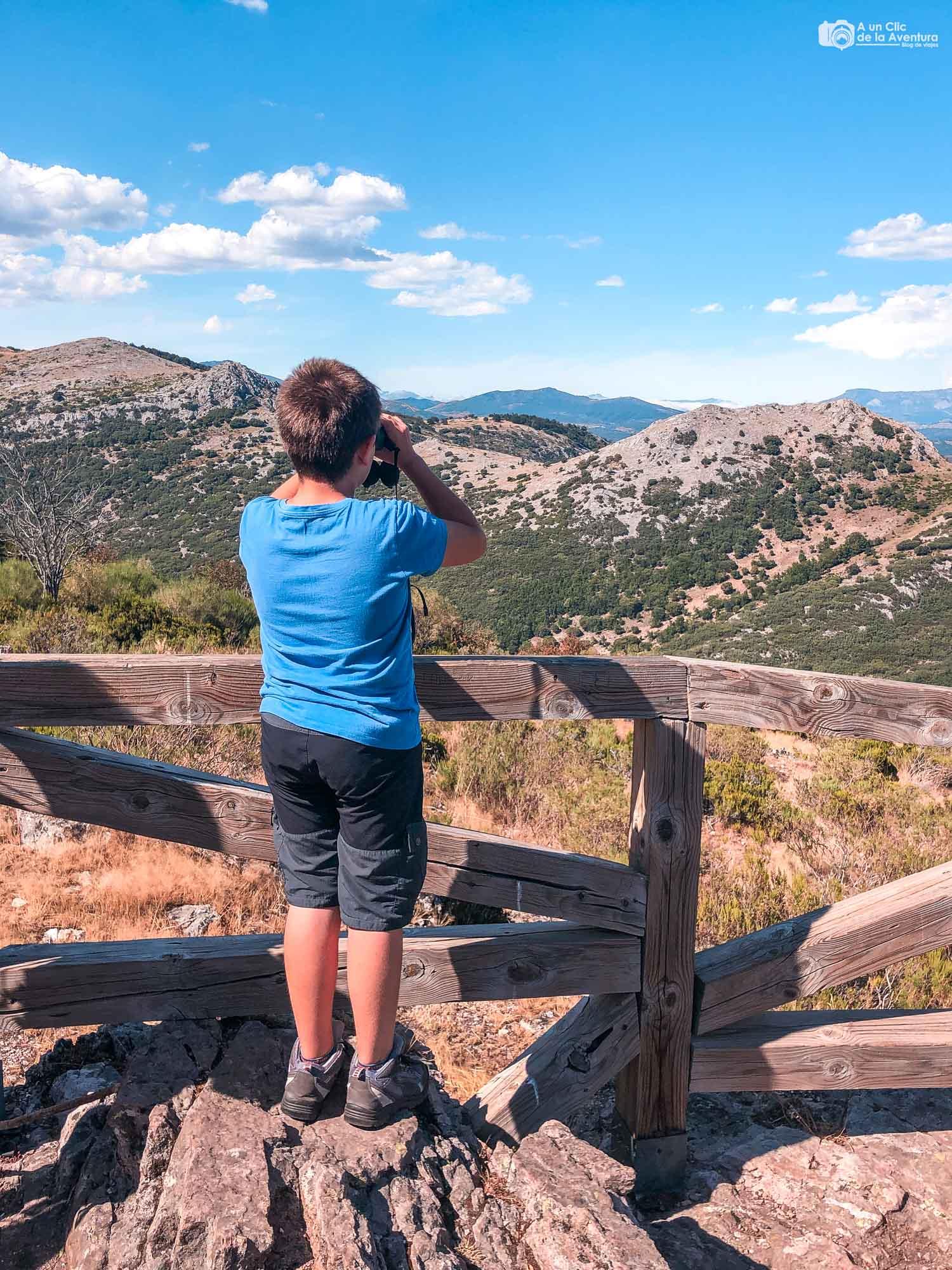 Observando la berrea en el Valle de Tosande