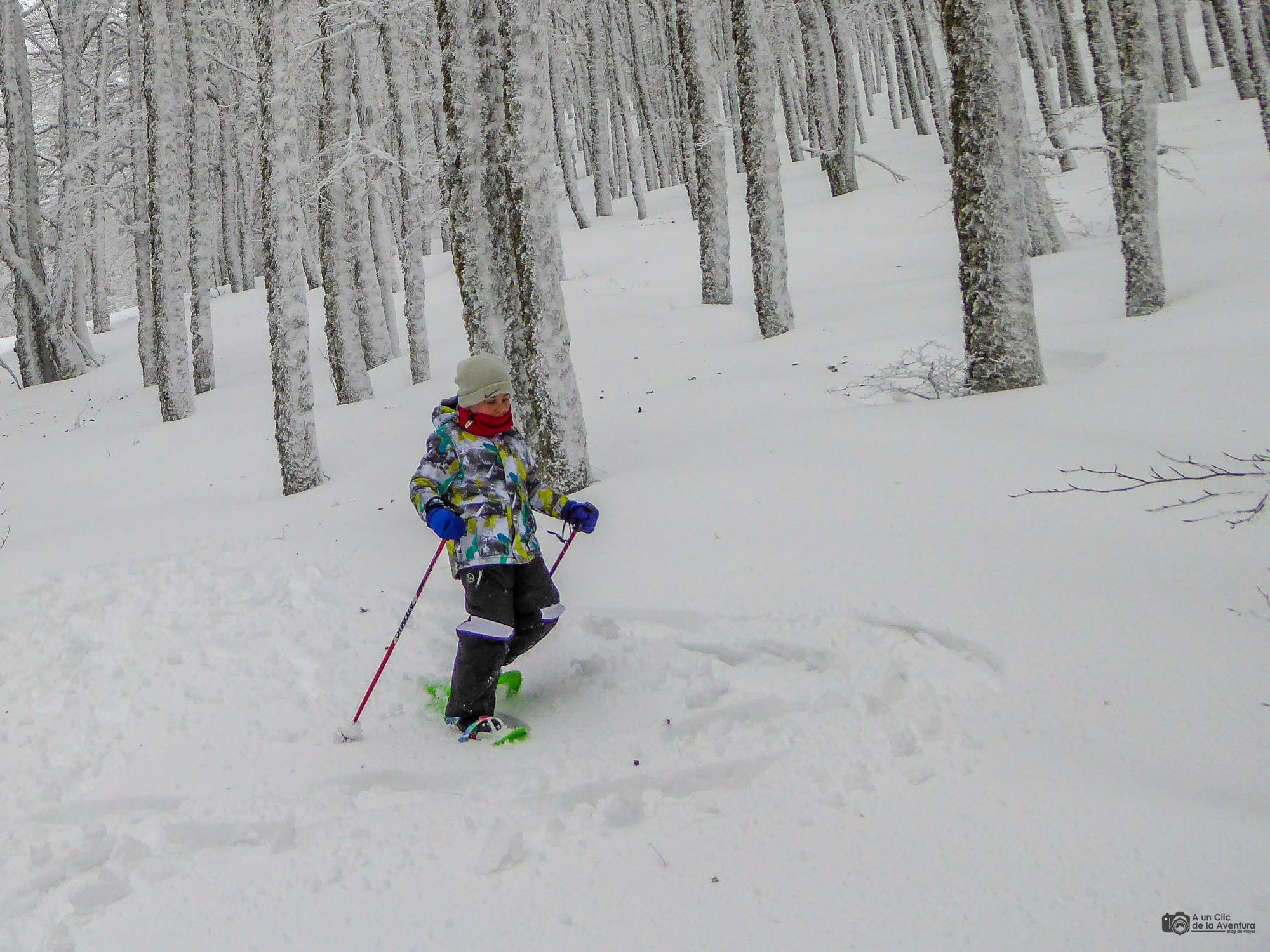 Ruta con raquetas de nieve en Andorra