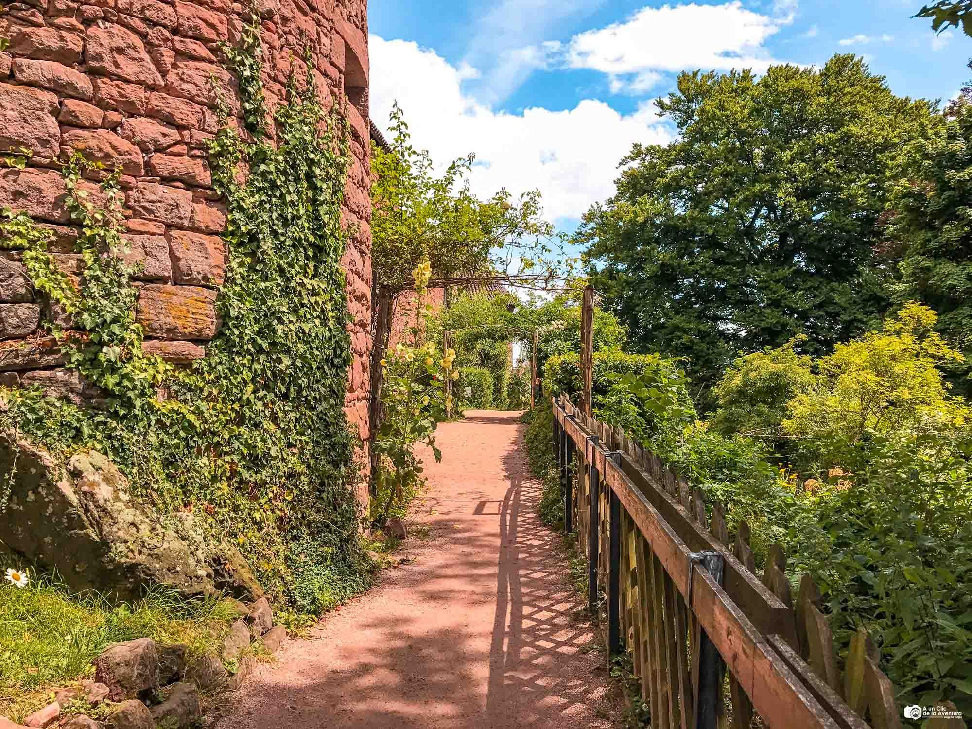 Jardín medieval del Castillo de Haut-Koenigsbourg