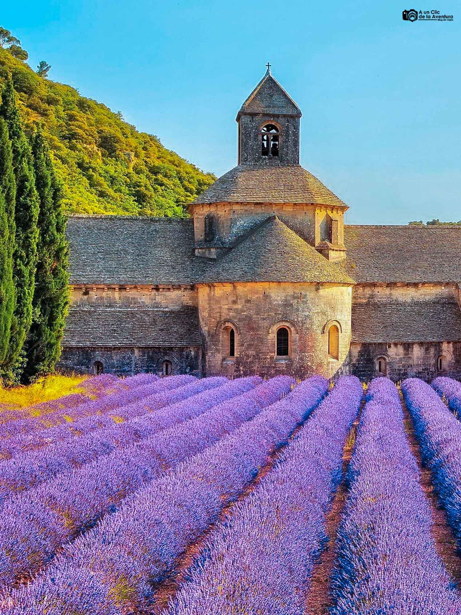 Abadía de Senanque que ver cerca de Avignon