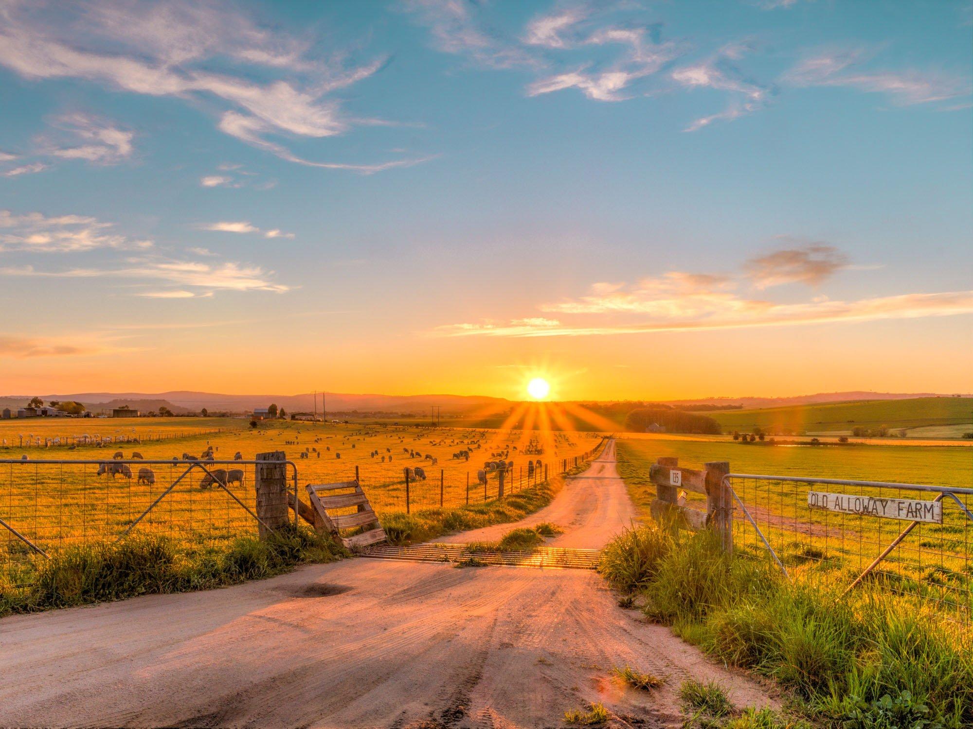 Granja de Australia
